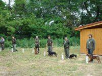 Klubové farbiarske skúšky malých plemien Lesné 2015