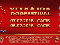 DOGFESTIVAL 2018